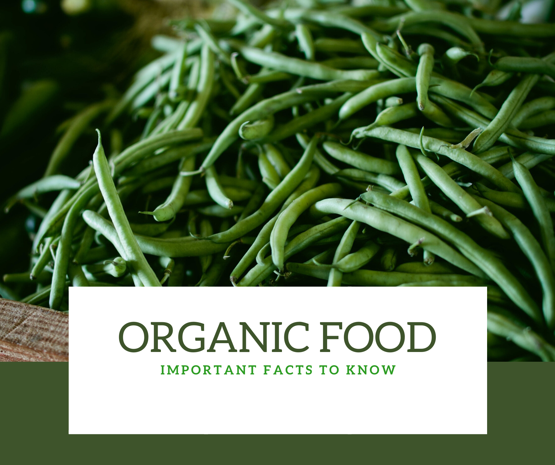 Organic foods – Important facts