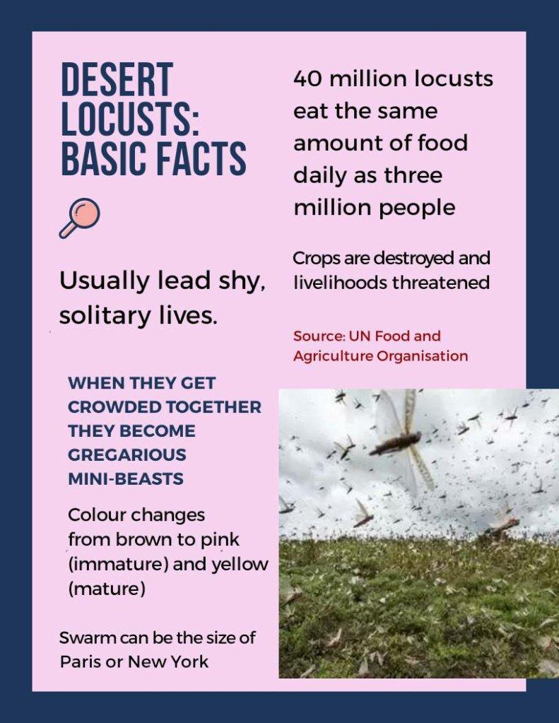 Desert Locusts: Facts