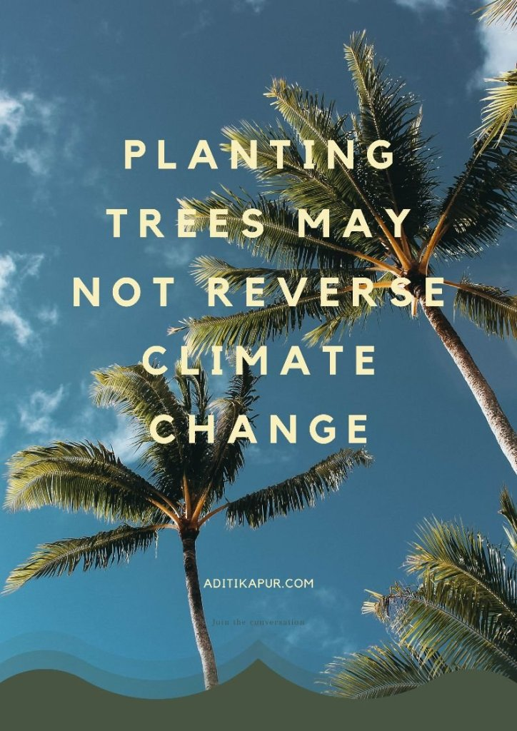 Planting trees not sufficient to reverse climate change