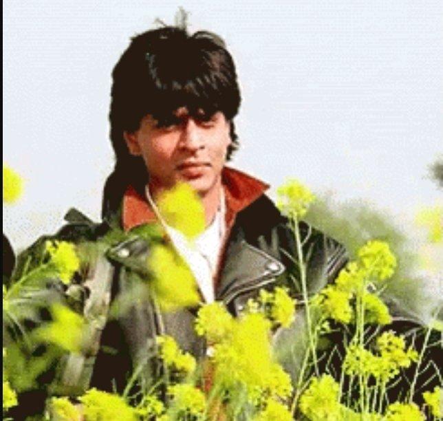 Shahrukh Khan in DDLJ